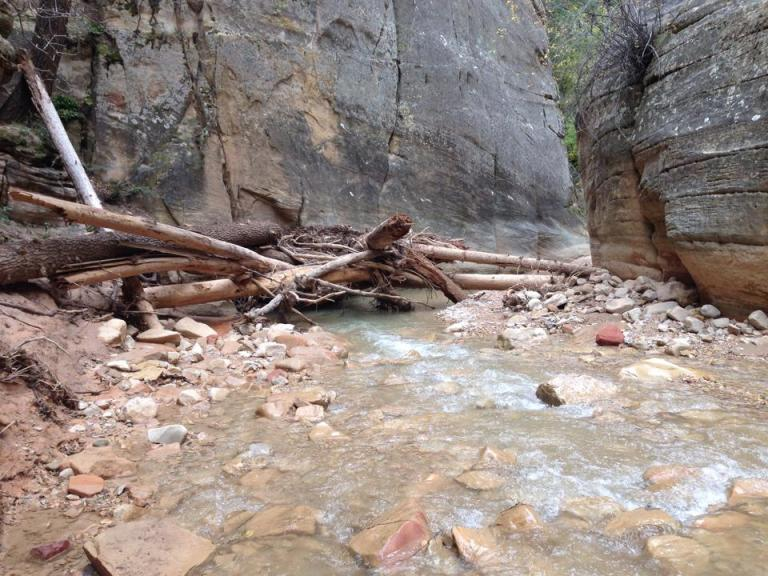 flood remnants Zion the Narrows