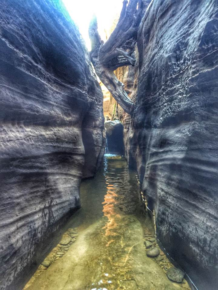 subway canyon swim